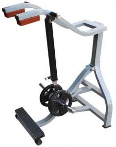 دستگاه های بدنسازی : دستگاه بدنسازی ساق پا ایستاده